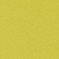 ROMA colore: verde lime (VP0906)