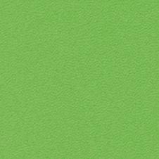 ROMA colore: verde acceso (VP0907)