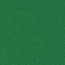 ROMA colore: verde scuro (VP0908)